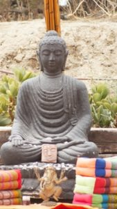 Hatha Yoga Classes pranayama